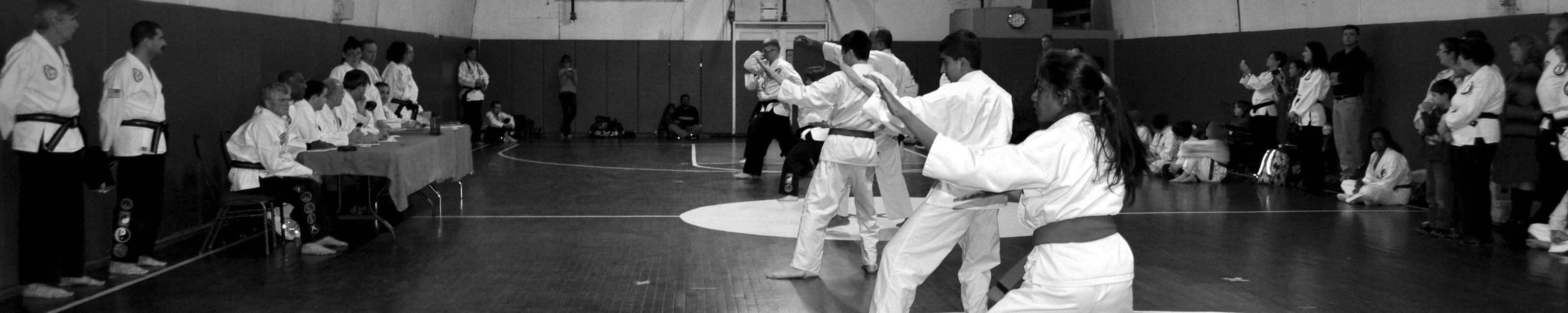 Tae Kwon Do Karate Club